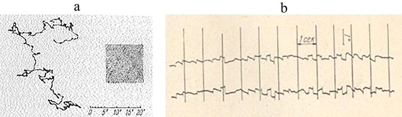 Fixation of a stationary point for 30 s: (a) a monocular record of gaze movement around the fixation point; (b) horizontal components of the left and right eye movements during fixation recorded on a moving phototape.